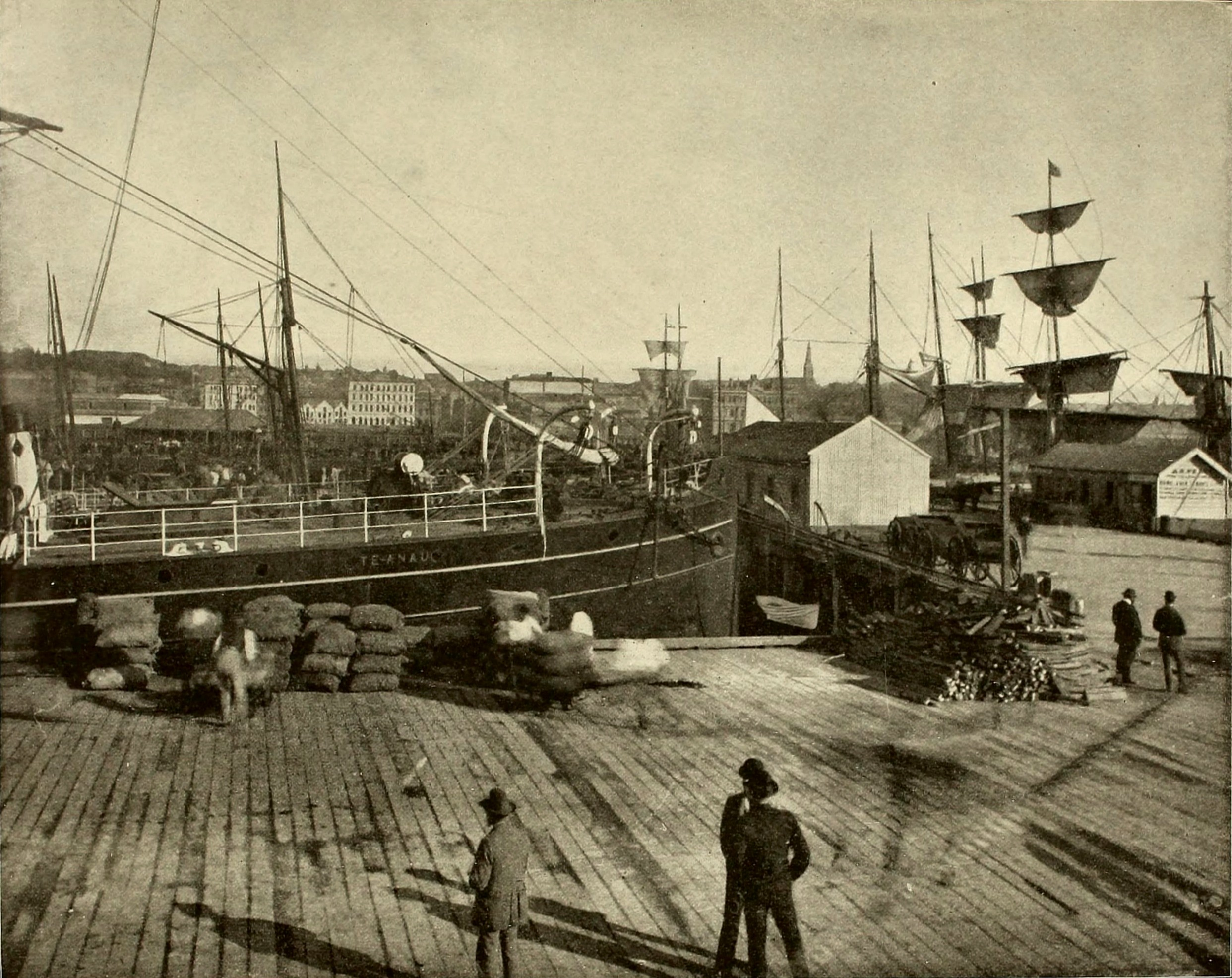 Auckland Harbor New Zealand about 1892