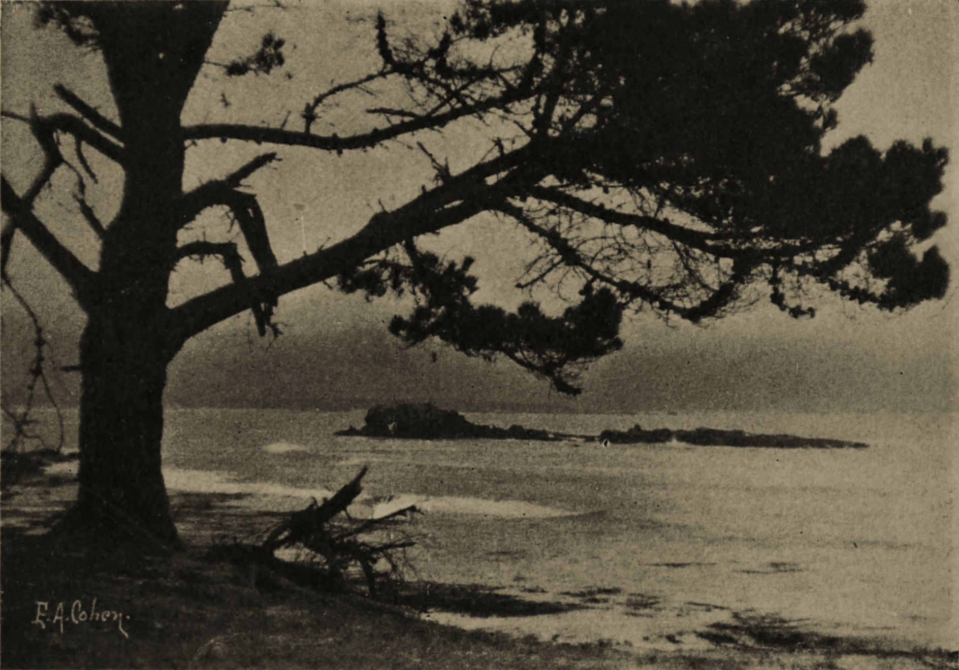 Arch Rock from Pebble Beach by Edgar A. Cohen about 1908