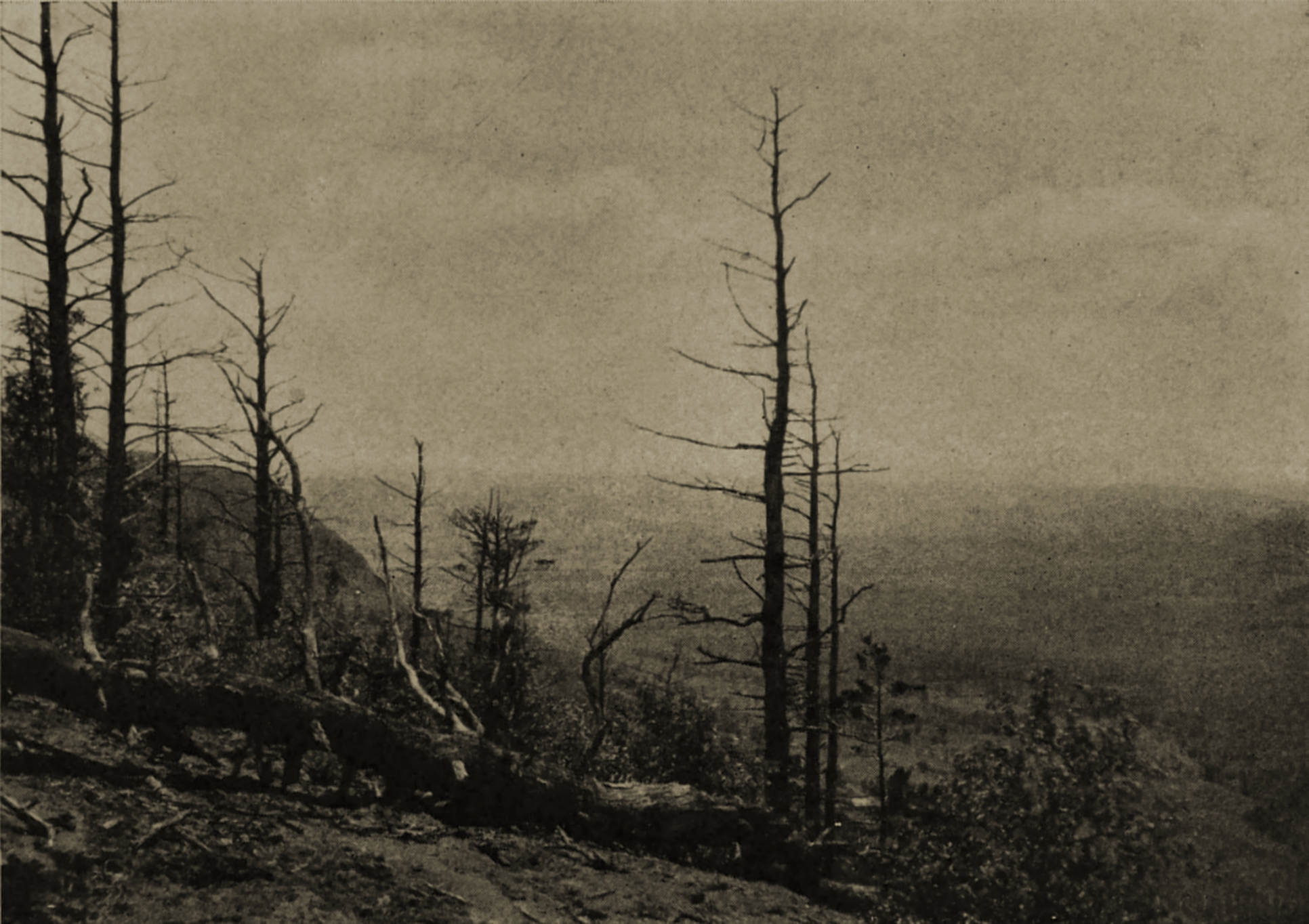 Canaan Mountain by E. G. Dunning about 1908