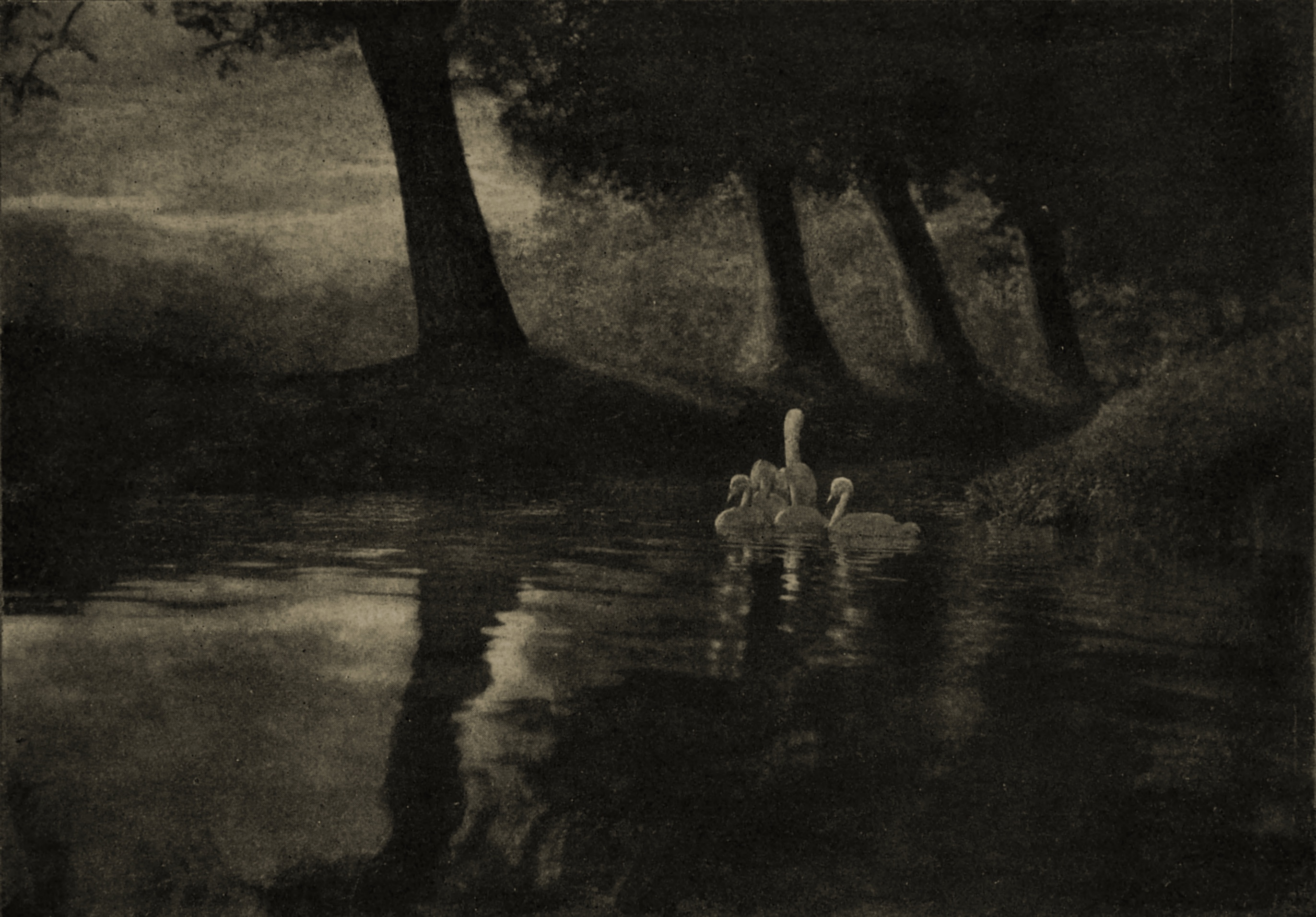 Pastoral by A. Keith Dannatt about 1908
