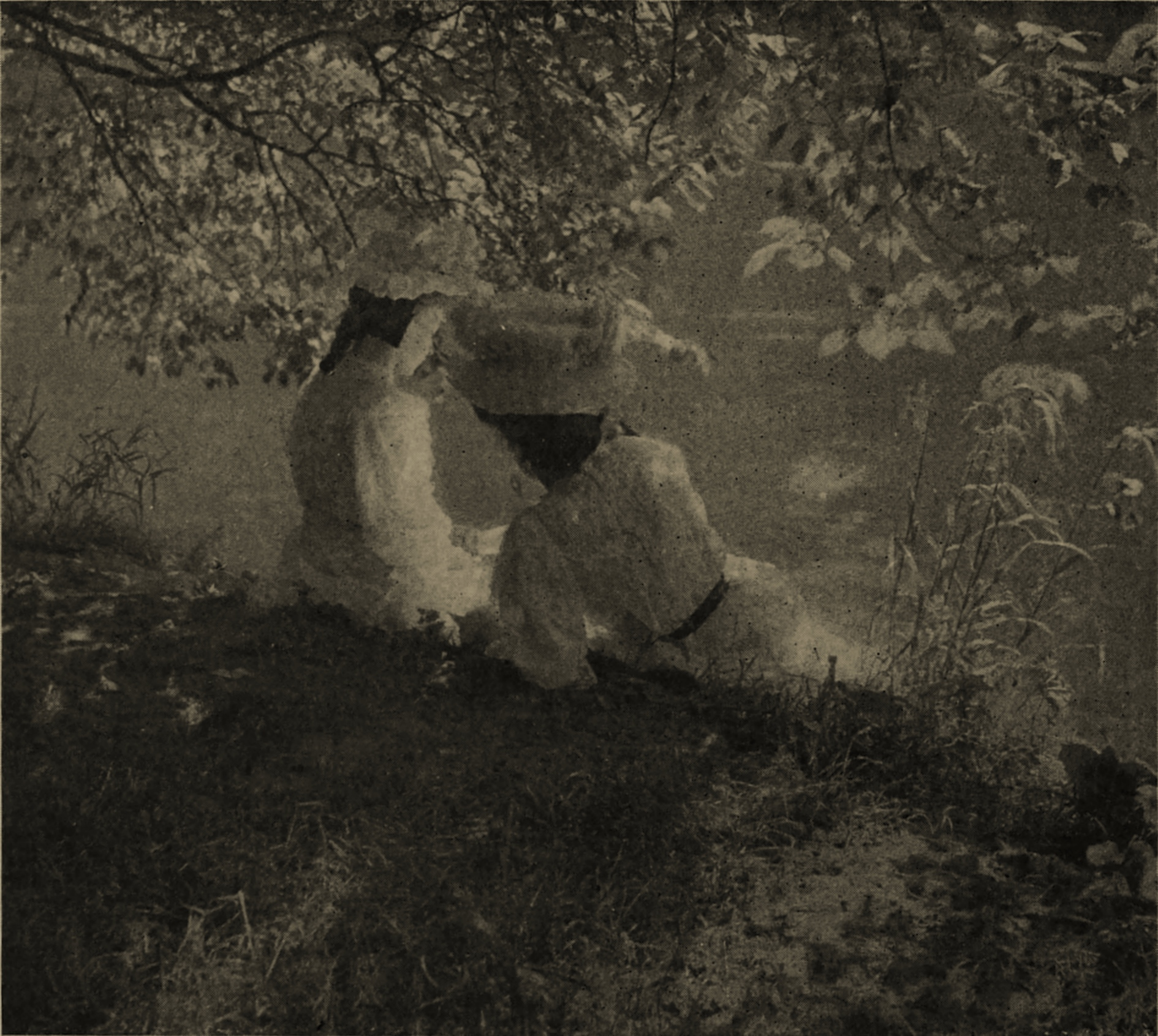 Leafy June by A. W. Walburn about 1908