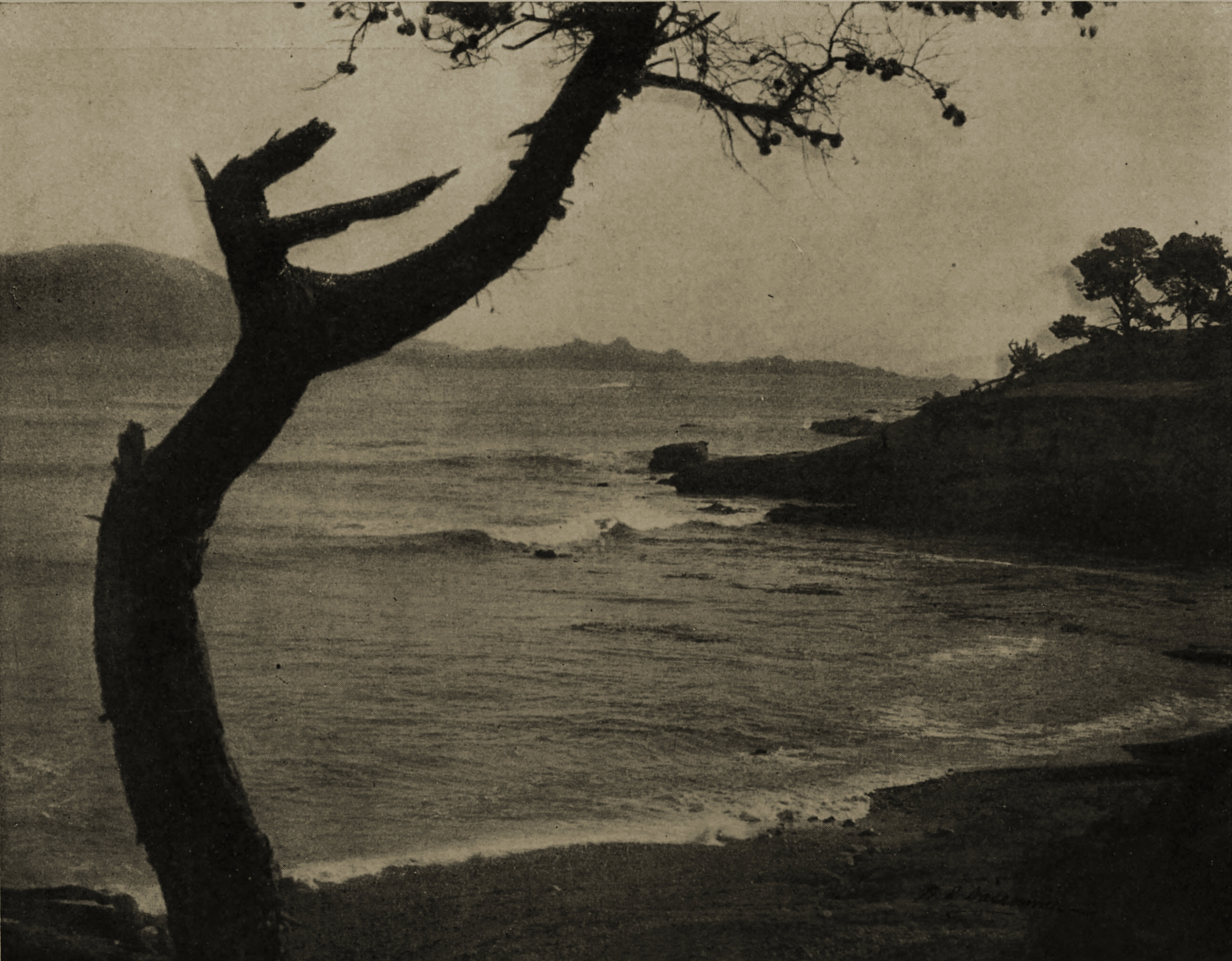 The Monterey Coast, California, USA by W. E. Dassonville about 1908