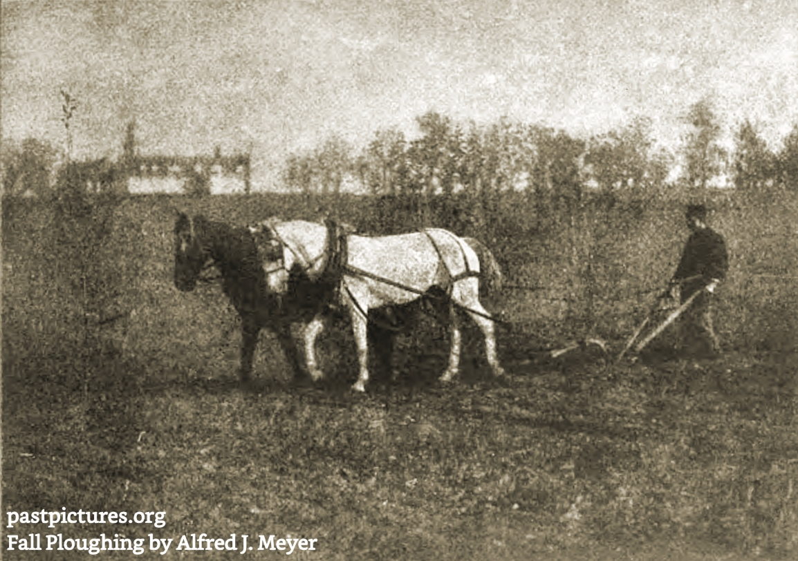 Fall Ploughing by Alfred J. Meyer about 1909