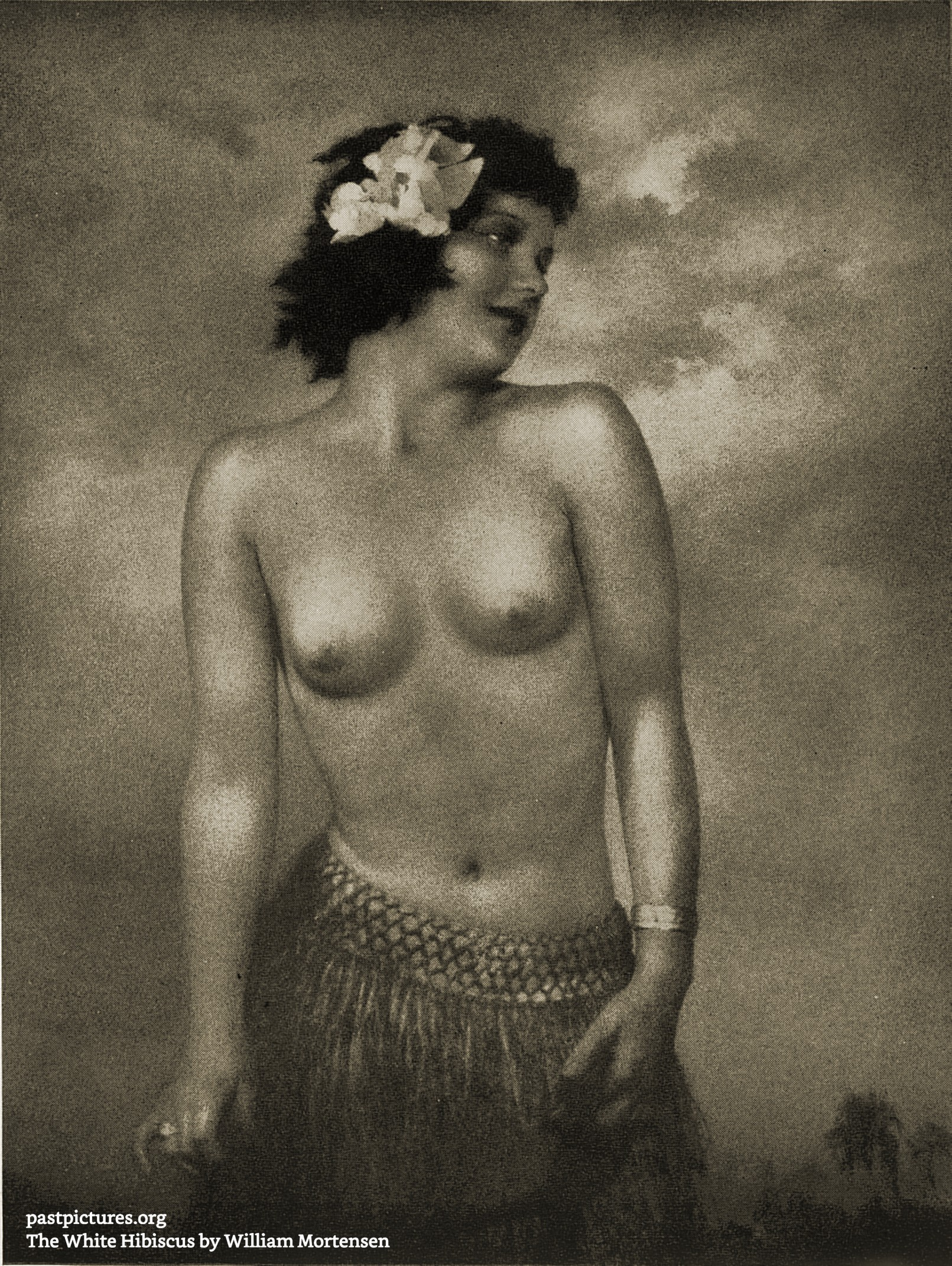 The White Hibiscus by William Mortensen about 1937